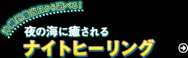 沖縄県真栄田岬 青の洞窟シュノーケルツアー